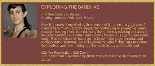 Exploring the bandhas workshop